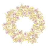 De hand getrokken kroon van de de zomer elegante en romantische grafische bloem in lighpastelkleuren Stock Foto's