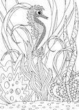 De hand Getrokken Volwassen Kleuring van Seahorse Stock Afbeelding