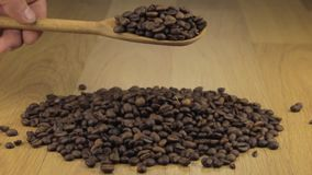 De hand giet snel de koffiebonen van een houten lepel op een stapel van koffiebonen stock videobeelden