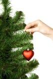 De hand hangt op het hart van de de pijnboomdecoratie van het Nieuwjaar stock foto's