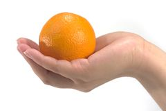 De hand houdt een sinaasappel Stock Fotografie