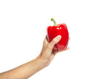 De hand houdt Spaanse peper op wit wordt geïsoleerd dat Royalty-vrije Stock Foto