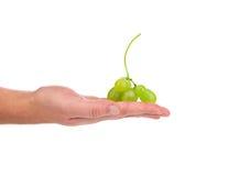 De hand houdt witte druiven Stock Foto's