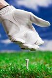 De hand met handschoen houdt bal stock afbeeldingen