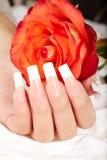 De hand met het Frans manicured spijkers en rood nam bloem toe stock afbeelding
