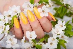 De hand met lange kunstmatig manicured spijkers die met geel nagellak worden gekleurd royalty-vrije stock foto's