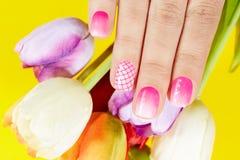 De hand met manicured spijkers en tulpenbloemen Stock Afbeelding