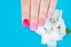 De hand met manicured verschillende spijkers gekleurd met nagellak Royalty-vrije Stock Fotografie
