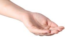 De hand neemt iets Royalty-vrije Stock Afbeelding