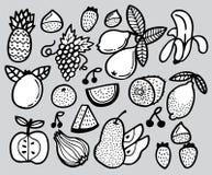 De hand trekt fruit Royalty-vrije Stock Afbeelding