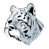 De hand trekt schets met tijgergezicht Royalty-vrije Stock Afbeelding