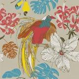 De hand trekt tropische bloemen en vogels Stock Afbeelding