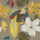 De hand trekt tropische bloemen en vogels Stock Foto's