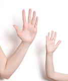 De hand van Childs en van de volwassene Stock Fotografie