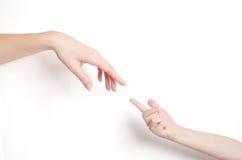 De hand van Childs en van de volwassene Stock Foto's