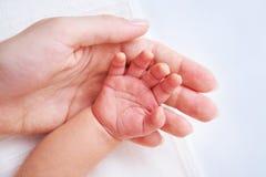 De hand van de baby stock afbeeldingen