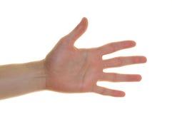 De hand van de jongen Royalty-vrije Stock Foto