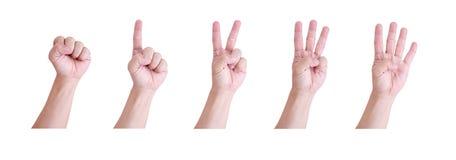 De hand van de mens. Stock Afbeelding