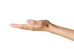 De hand van de vrouw Royalty-vrije Stock Fotografie