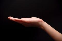 De hand van de vrouw Stock Fotografie