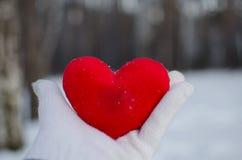 De hand van een man of een vrouw in een witte handschoen houdt een rood hart in het de winterbos tegen de witte sneeuw royalty-vrije stock fotografie