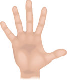 De hand van lichaamsdelen vector illustratie