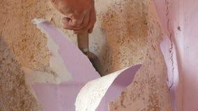 De hand van de mannelijke bouwer scheurt van oud roze behang van een muur op reparatie stock footage
