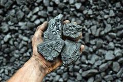 De hand van de mijnwerker toont steenkool in mijn stock foto's