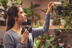 De hand van de persoon die het beeld van bloemen op de camera nemen royalty-vrije stock afbeeldingen