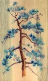 De hand van de pijnboomboom op houten achtergrond wordt geschilderd die Het Schilderen van de waterverf Stock Afbeelding