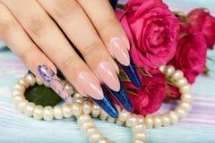 De hand wiith het lange kunstmatige Frans manicured spijkers en roze nam bloemen toe Stock Foto