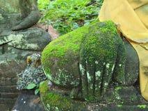 De handbeeldhouwwerk van Boedha met mos in groen aard, antiquiteit en overblijfsel in Azië wordt behandeld dat stock foto's