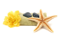 De handdoek, de rotsen, de bloem en de zeester van het kuuroord Royalty-vrije Stock Afbeeldingen