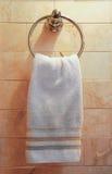De handdoek van de hand Stock Afbeeldingen