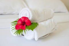 De handdoeken van het hotel Stock Fotografie