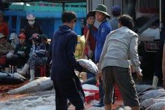 De handel van tonijnvissen bij de vissenhaven van Qui Nhon, Vietnam Royalty-vrije Stock Afbeelding