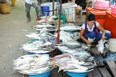 De handelaar die veel soort vissen voorbereidt Stock Foto's