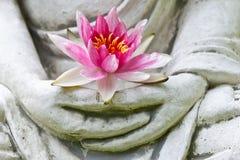 De handen die van Boedha bloem houden