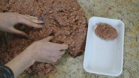 De handen die van de close-upvrouw ` s drie vleeskoteletten maken en gezet het in container Langzame Motie stock footage