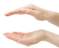 De handen die van de vrouw om het even wat van bovenkant en bodem houden   Royalty-vrije Stock Foto's