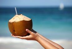 De handen die van de vrouw `s kokosnoot houden Stock Foto's