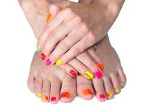 De handen en de voeten van de jonge vrouw met heldere manicure en pedicure Royalty-vrije Stock Foto