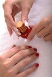 De Handen en het Nagellak van Manicured Stock Fotografie
