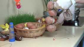 De handen met handschoenen zetten uishell en wit ei in sok en koord stock videobeelden