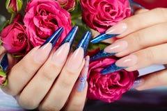 De handen met het lange kunstmatige blauwe Frans manicured spijkers en namen bloemen toe royalty-vrije stock foto's