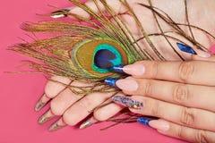 De handen met het lange kunstmatige blauwe Frans manicured spijkers en pauwveer stock afbeeldingen