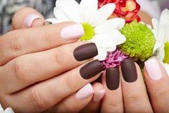 De handen met mooie roze en purple manicured spijkers royalty-vrije stock foto
