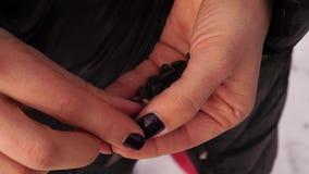 De handen met zwarte spijkers maken zonnebloemzaden van shell schoon stock videobeelden