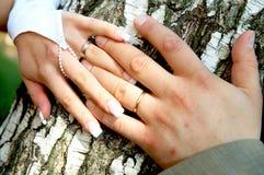 De handen van de bruid en van de bruidegom Royalty-vrije Stock Afbeeldingen