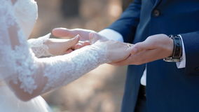 De handen van de bruidegomkus van zijn bruid stock videobeelden